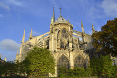 Notre Dame de Paris Exterior Immagine Stock Libera da Diritti
