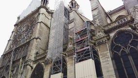 Notre Dame De Paris After The Fire almacen de metraje de vídeo
