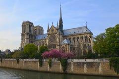 Notre Dame de Paris, France imagens de stock royalty free