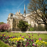 Notre dame de Paris - France Stock Photos