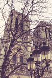 Notre Dame de Paris in Frankrijk, voorgevel Royalty-vrije Stock Fotografie
