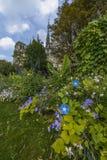 Notre-Dame de paris gardens in a summer sunny day Royalty Free Stock Photos