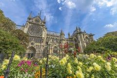 Notre-Dame de paris gardens in a summer sunny day Stock Image