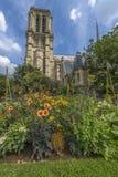 Notre-Dame de paris gardens in a summer sunny day Royalty Free Stock Photography