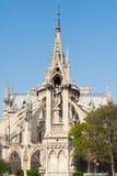 Notre-Dame de Paris katedra od ogródów na słonecznym dniu Obraz Stock