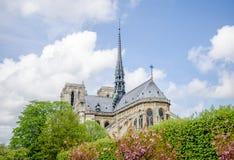 Notre Dame De Paris katedralny widok wschodnie i południowe fasady Zdjęcie Stock