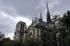 Notre Dame de Paris. Nice view of Notre Dame de Paris with a bird Royalty Free Stock Photos