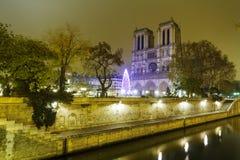 Notre Dame de Paris over de Rivier van de Zegen Stock Afbeelding