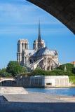 Notre Dame de Paris, Parijs, Frankrijk Stock Foto's