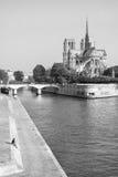 Notre Dame de Paris por la mañana del verano en blanco y negro PA Foto de archivo