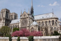 Notre Dame de Paris side Royalty Free Stock Photos