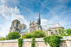 Notre-Dame de Paris sikt från Seine Royaltyfria Bilder
