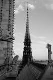 Notre-Dame de Paris Steeple Royalty Free Stock Images