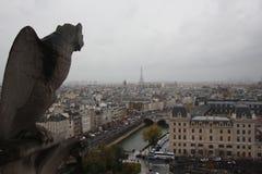 Notre dame de paris stone monster rooftop. Birdview of Paris, la seine on a cloudy misery day Stock Images