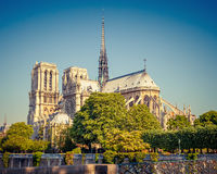 Notre Dame de Paris at sunny day Royalty Free Stock Photos