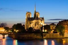 Notre Dame de Paris. Vista di notte. Fotografie Stock Libere da Diritti