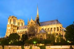 Notre Dame de Paris. Vista di sera. Fotografia Stock Libera da Diritti