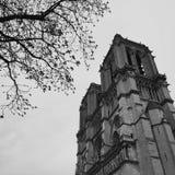 Notre Dame De Paris, vue de la cathédrale principale de la France et de Paris photo stock
