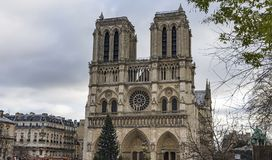 Notre Dame de Paris in winter in December. Large Christmas tree in front of the Notre-Dame de Paris Notre Dame de Paris in winter in December Royalty Free Stock Images