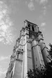Notre-Dame de Paris wordt gezien die van onderaan Royalty-vrije Stock Afbeeldingen
