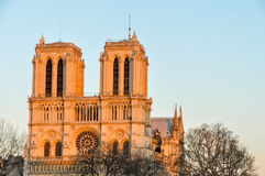 Notre-Dame de Parisdomkyrka på solnedgången Royaltyfri Fotografi
