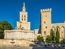 Notre Dame des Doms大教堂在阿维尼翁 免版税库存照片