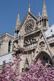 Notre dame detail Stock Image