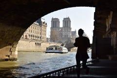 Notre Dame di Parigi Immagine Stock Libera da Diritti