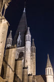 Notre Dame, Dijon, França Fotos de Stock Royalty Free