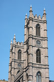 Notre Dame domkyrka i Montreal Royaltyfri Fotografi