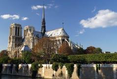 Notre Dame durch den Seine Stockbilder