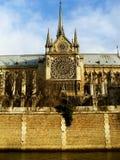 Notre Dame, een mening van water - Parijs Stock Fotografie