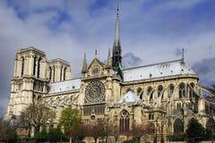Notre Dame - eine Ansicht von unterhalb, Paris Stockfotografie