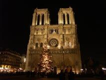 Notre Dame en la noche durante la Navidad 1 Imágenes de archivo libres de regalías