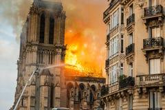 Notre-Dame-Feuerwehrmänner stockfotografie