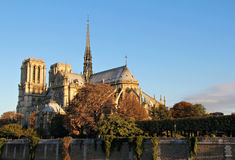 Notre Dame in first daylight Royalty Free Stock Images