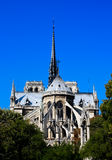 Notre Dame with a flawless blue sky Royalty Free Stock Photo