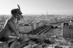Notre Dame Gargoyle Στοκ εικόνες με δικαίωμα ελεύθερης χρήσης