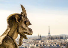 Notre Dame Gargoyle, Paris, France Royalty Free Stock Images