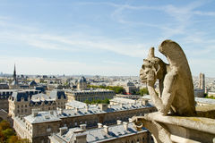 Notre Dame Gargoyle Royalty Free Stock Photos