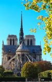 The Notre Dame Cathedral , Paris, France. Royalty Free Stock Image