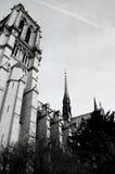 Notre Dame i svartvitt Royaltyfria Foton