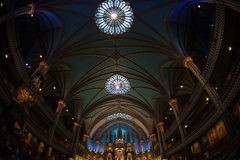 Notre Dame interna Fotografia Stock