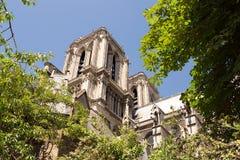 Notre-Dame katedra w Paryż, Francja 2015 obraz royalty free