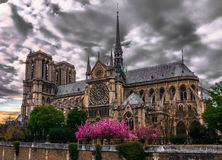 Notre-Dame lamagnifique Royaltyfria Bilder