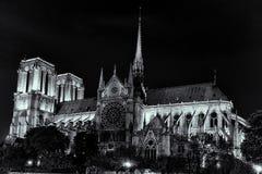 Notre Dame på natten Royaltyfria Foton