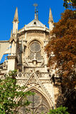 Notre Dame, París Fotos de archivo