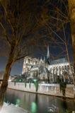 Notre Dame par nuit Photo libre de droits