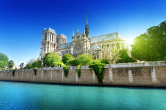 Notre Dame Parigi, Francia Immagini Stock Libere da Diritti