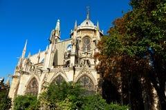 Notre Dame, Parijs Royalty-vrije Stock Afbeelding